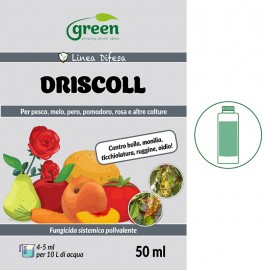 Green DRISCOLL - 15 ml